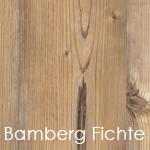 Bamberg_Fichte